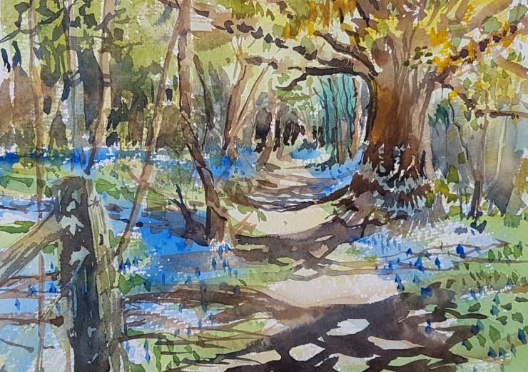 Kirstin White - Bluebell Woods near Soberton